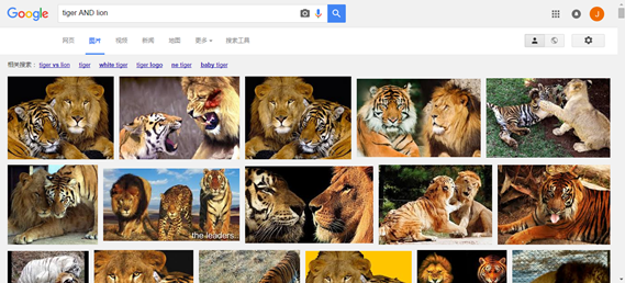 Google-tiger AND lion